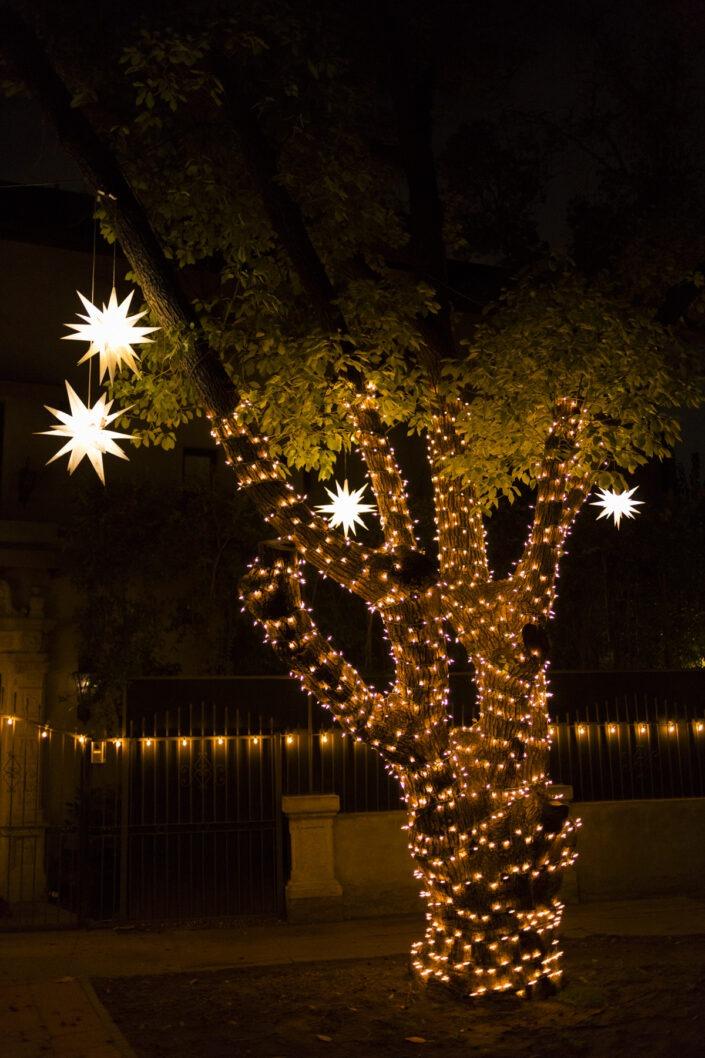 decoration, Noël, Los Angeles, California, usa