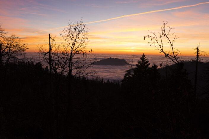 Mer de nuage, Sequoia National Park, California , usa